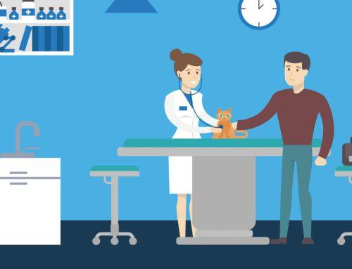 Debt Collection Best Practices for Veterinarians